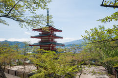Mount Fuji with Clear sky at Kawakuchigo lake with red maple Royalty Free Stock Image