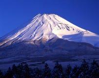 Mount Fuji CXXII Stock Image