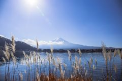 Mount Fuji стоковое изображение rf