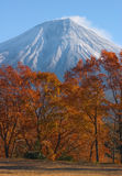 Mount Fuji in Fall Royalty Free Stock Image