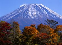 Mount Fuji in Fall VII Royalty Free Stock Images