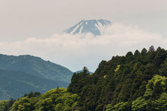Mount Fuji. With forested slopes in foreground royalty free stock photography