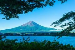 Mount Fuji Framed Trees Morning Kawaguchiko Lake Royalty Free Stock Images
