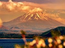 Mt. Fuji, famous japanese landmark with flowers. Mount Fuji Fujisan located on Honshu, is the highest volcano in Japan at 3,776.24 m 12,389 ft, 2nd-highest peak royalty free stock image