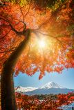 Mount Fuji i Autumn Color, Japan arkivfoton