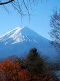 Mount Fuji i höst Fotografering för Bildbyråer
