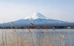 Mount Fuji i morgonen, Japan Arkivfoto