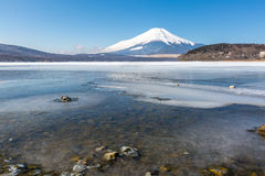 Mount Fuji Iced Yamanaka Lake Royalty Free Stock Photos