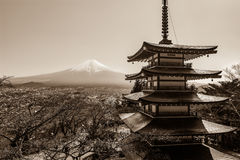 Mount Fuji and the iconic five-level Chureito Pagoda on a clear spring day stock photos