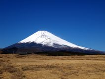 Mount Fuji, Japan. View of Fuji Montain, Japan from a dried field in summer Royalty Free Stock Images