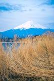 The mount Fuji in Japan Stock Photo