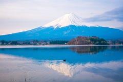 The mount Fuji in Japan Royalty Free Stock Photos