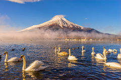 Mount Fuji, Japan. Mount Fuji reflected in Lake Yamanaka at dawn, Japan Stock Photo