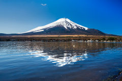 Mount Fuji, Japan. royalty free stock photos