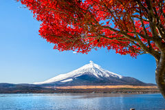Mount Fuji, Japan. Mount Fuji reflected in Lake Yamanaka at dawn, Japan Stock Photos