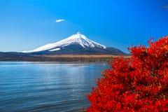 Mount Fuji, Japan. Stock Photo