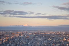 Mount Fuji in Japan Stock Image