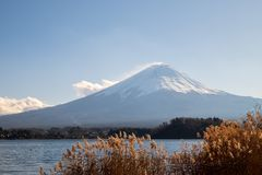 Mount Fuji with lake in the foreground in a clear day. The Mount Fuji with lake in the foreground in a clear day royalty free stock image