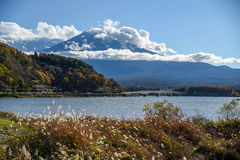 Mount Fuji at Lake Kawaguchi, Japan. Beautiful view of Mount Fuji and field at Lake Kawaguchi in autumn, This mountain is an famous place of Japan stock photography