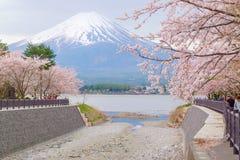 Mount Fuji from lake Kawaguchiko with cherry blossom in Yamanashi, Japan. Kawaguchiko , Japan - April 18, 2016: Mount Fuji from lake Kawaguchiko with cherry stock photo