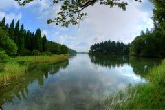 Mount Fuji and lake Tanukiko. View of Mount Fuji from lake Tanukiko in Japan royalty free stock photos