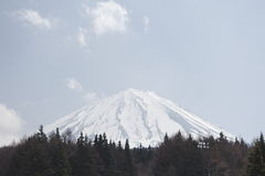 Mount Fuji. Located on Honshu Island, is the highest mountain in Japan royalty free stock image