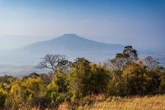 Mount Fuji at Loei Province, Thailand Stock Photo