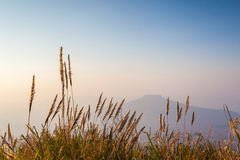 Mount Fuji at Loei Province, Thailand Stock Photography
