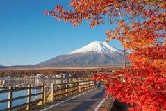 Mount Fuji med coulourful av l?nnl?v p? sj?n Yamanaka royaltyfria foton