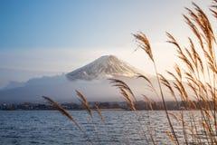 Mount Fuji med låg nivåmoln och sjöKawaguchi-knock-out på solnedgången arkivbilder