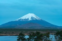 Mount Fuji or Mt. Fuji, the World Heritage, view in Lake Shoji ( Shojiko ). Fuji Five Lake region. Minamitsuru District, Yamanashi prefecture, Japan. Landscape stock photography
