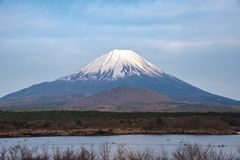 Mount Fuji or Mt. Fuji, the World Heritage, view in Lake Shoji ( Shojiko ). Fuji Five Lake region. Minamitsuru District, Yamanashi prefecture, Japan. Landscape royalty free stock images