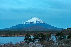 Mount Fuji or Mt. Fuji, the World Heritage, view in Lake Shoji ( Shojiko ). Fuji Five Lake region. Minamitsuru District, Yamanashi prefecture, Japan. Landscape stock photo