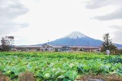 Mount Fuji p? sj?n Yamanaka i h?sts?songen av Japan royaltyfri foto