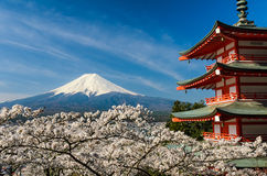 Mount Fuji with pagoda and cherry trees, Japan Royalty Free Stock Photo