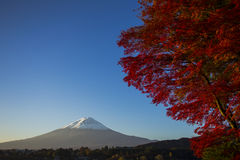 Mount Fuji with red autumn leaf. Japan Stock Photos