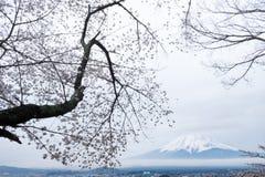 Mount Fuji with sakura trees and cityscape Stock Image