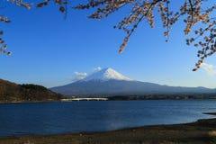 Mount Fuji and Sakura. View of mount Fuji Fujiyama with Sakura branches at Kawaguchiko, Japan stock images