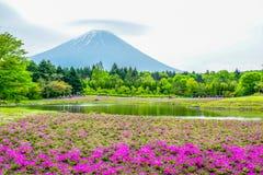 Mount Fuji sikt bak färgrikt blommafält på Fuji Shibazakura Fastival, Japan Royaltyfri Fotografi