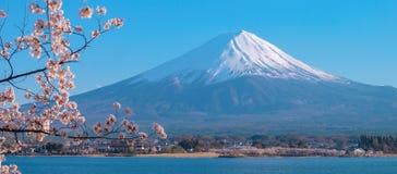 Beautiful Mount Fuji with snow capped and blue sky at Lake kawaguchiko, Japan. royalty free stock photos