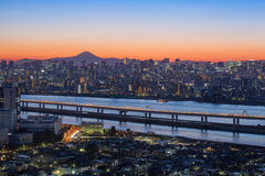 Mount Fuji and Tokyo tower Royalty Free Stock Photo