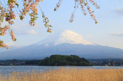 Mount Fuji, view from Lake Kawaguchiko Royalty Free Stock Photography