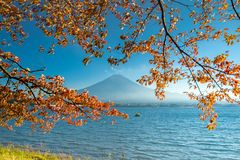 Mount Fuji viewed from lake Kawaguchiko stock images