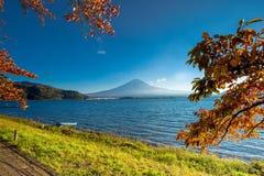 Mount Fuji viewed from lake Kawaguchiko royalty free stock image