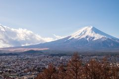 Mount Fuji and the village which is in front of the mountain. The Mount Fuji and the village which is in front of the mountain royalty free stock photography