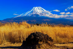 Mount Fuji and volcanic rock in Asagiri Plateau Stock Photography