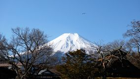 Mount Fuji in winter stock photos