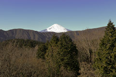 Mount Fuji in Winter Royalty Free Stock Photos