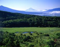 Mount Fuji XCI. Mount Fuji from afar with forest, meadow and pond in foreground Stock Images