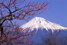 Mount Fuji XXIII Stock Photos